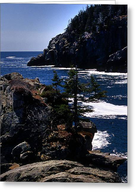 Senic View Greeting Cards - Coastal Maine Greeting Card by Skip Willits