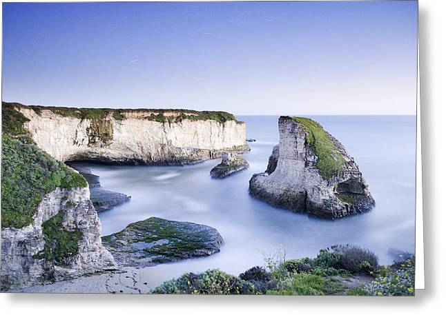 Sharks Cove Greeting Cards - Coastline At Dusk Shark Fin Cove Greeting Card by Sebastian Kennerknecht
