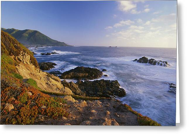 Big Sur Beach Greeting Cards - Coastline Big Sur Garrapata State Beach Greeting Card by Tim Fitzharris
