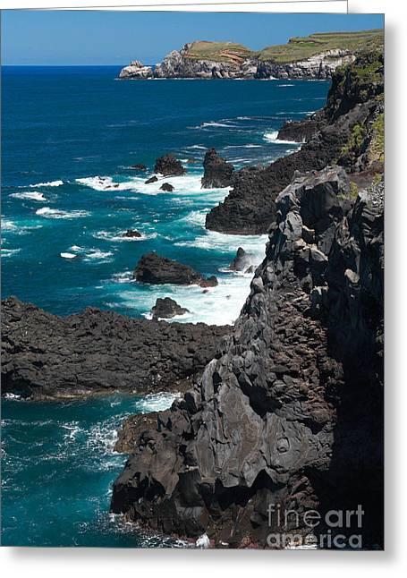 Coastline Greeting Card by Gaspar Avila