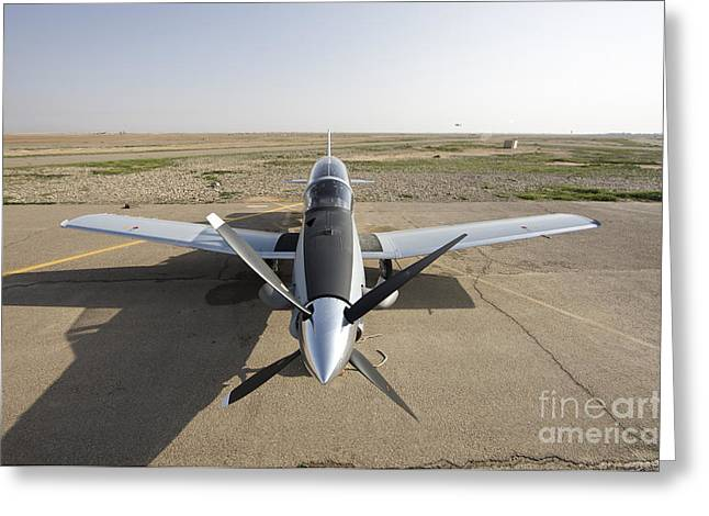 Tikrit Greeting Cards - Cob Speicher, Tikrit, Iraq - A T-6 Greeting Card by Terry Moore