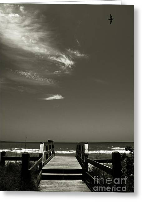 Abstract Beach Landscape Greeting Cards - Coconut Point Beach FL Greeting Card by Susanne Van Hulst
