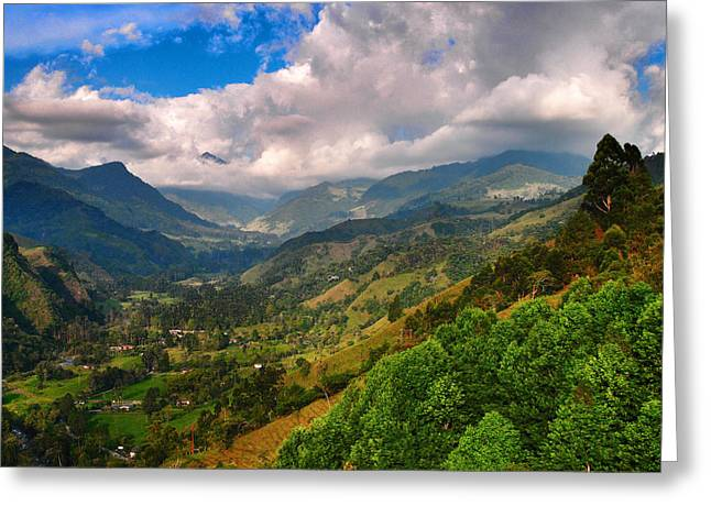 Cocora Valley Greeting Card by Skip Hunt