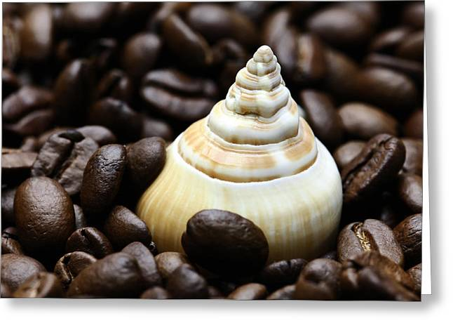 Kaffee Greeting Cards - Coffee beans snail Greeting Card by Falko Follert