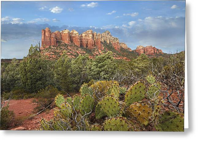 Geologic Formations Greeting Cards - Coffee Pot Rock Near Sedona Arizona Greeting Card by Tim Fitzharris