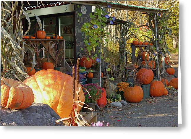 Colby Farm Stand Greeting Card by Kristine Patti