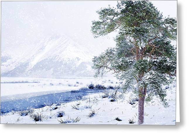 Seaside Digital Art Greeting Cards - Cold and Windy Greeting Card by Svetlana Sewell