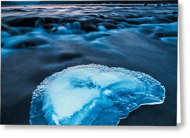 Cold blue Greeting Card by Davorin Mance
