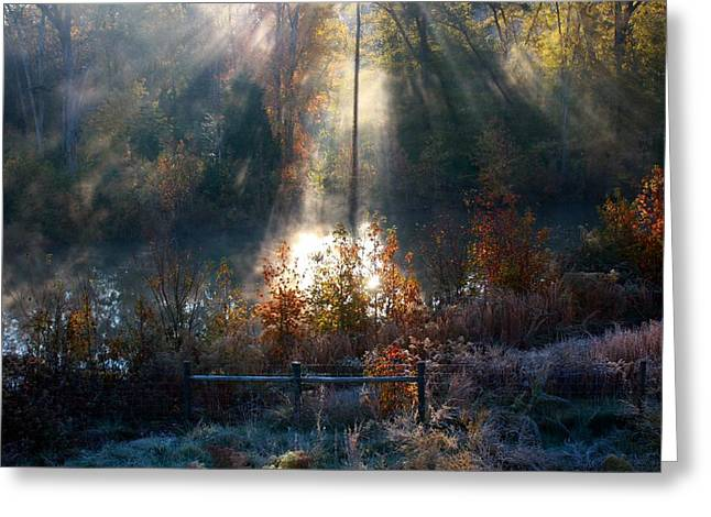 Cold Mist Iv Greeting Card by Michael Tipton