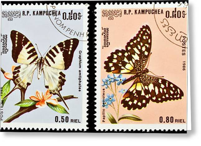 Danaus Genutia Greeting Cards - Collection of butterflies stamps. Greeting Card by Fernando Barozza
