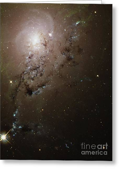 Wfpc2 Greeting Cards - Colliding Galaxies Ngc 1275, Hubble Greeting Card by Space Telescope Science Institute / NASA