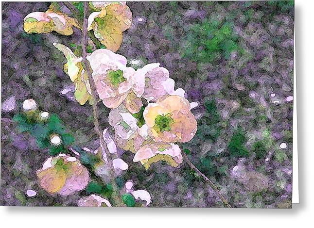 Color 68 Greeting Card by Pamela Cooper