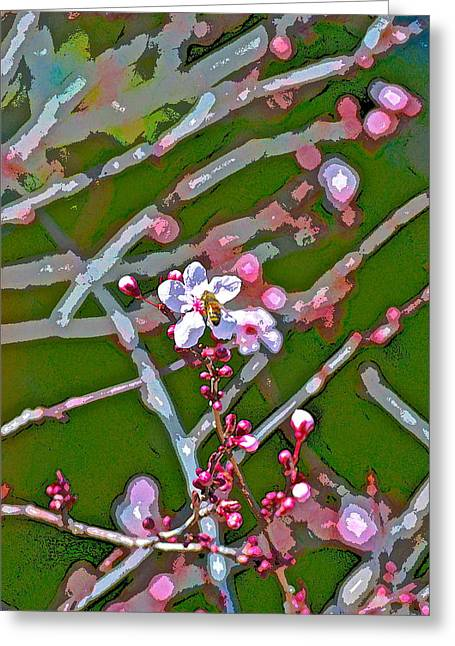 Color 75 Greeting Card by Pamela Cooper