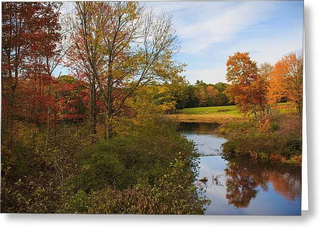 Maine Landscape Greeting Cards - Color along the stream Greeting Card by Cheryl Swift
