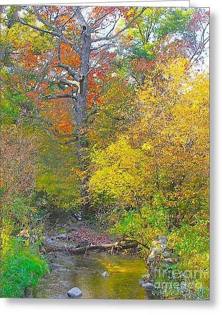 Tone Mapped Greeting Cards - Color Creek Greeting Card by Robert Pearson