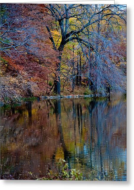 Color Fall Greeting Card by Martin Goldberg