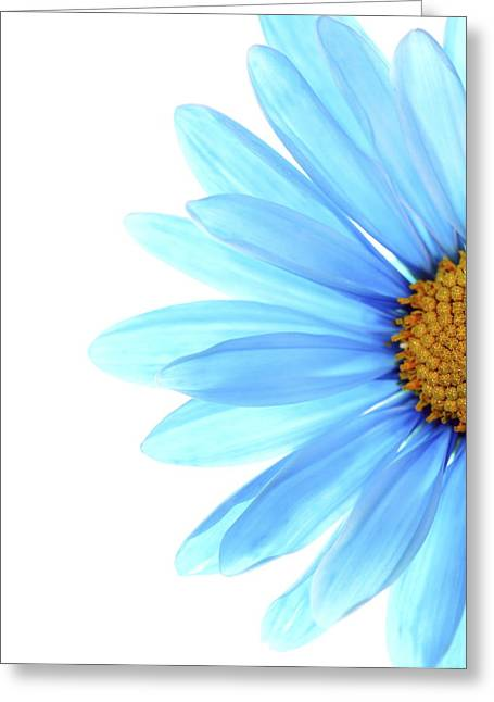 Blue Floral Greeting Cards - Color Me Blue Greeting Card by Rebecca Cozart