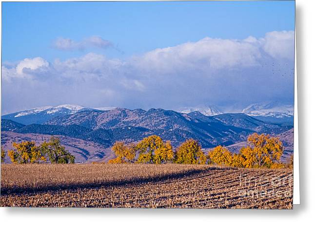 Autumn Prints Greeting Cards - Colorado Autumn Morning Scenic View Greeting Card by James BO  Insogna
