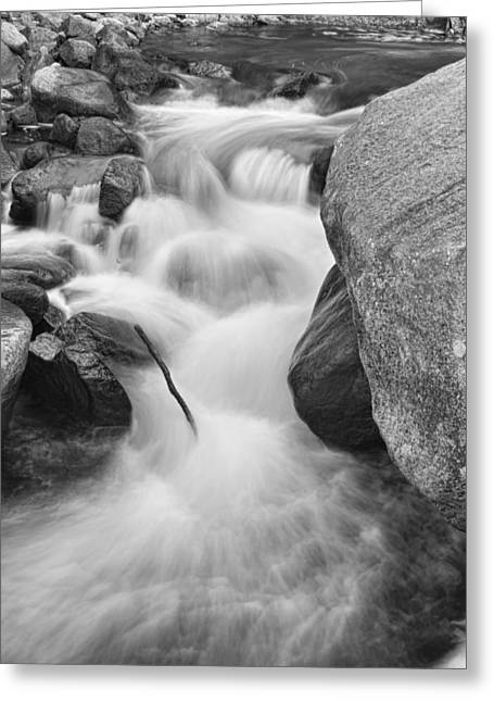 Water Flowing Greeting Cards - Colorado St Vrain River Trance BW Greeting Card by James BO  Insogna
