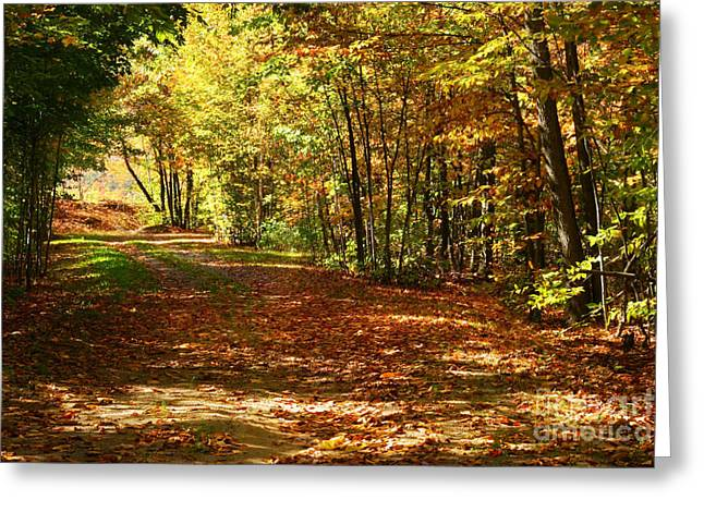 Autumn Decorations Greeting Cards - Colorful autumn afternoon Greeting Card by Sandra Cunningham