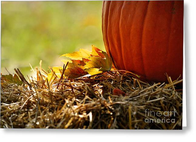 Colorful Autumn Greeting Card by Nava  Thompson