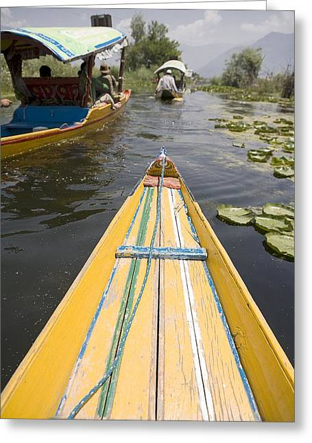 Dal Lake Greeting Cards - Colorful Boats On Dal Lake Dal Lake Greeting Card by David DuChemin