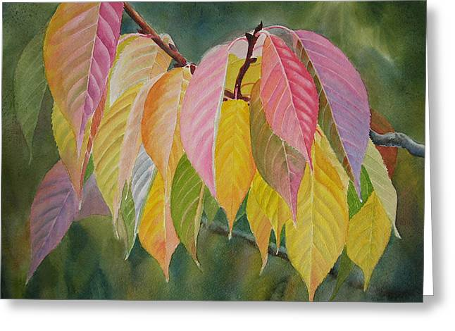 Orange Leaves Greeting Cards - Colorful Fall Leaves Greeting Card by Sharon Freeman