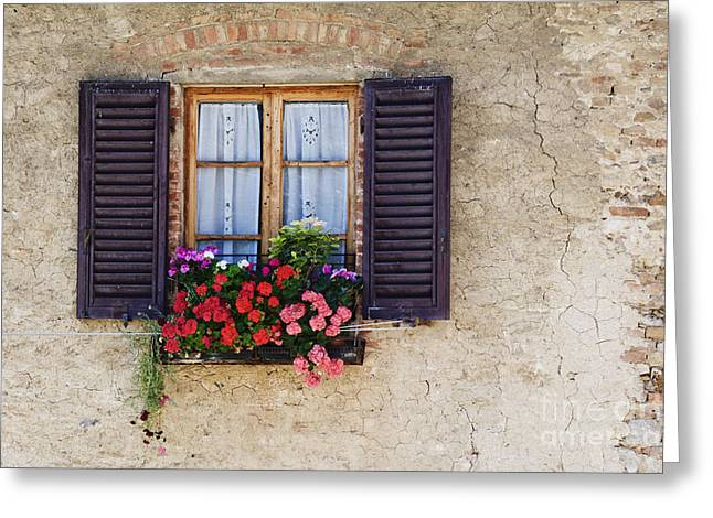 Stone Flower Planter Greeting Cards - Colorful Flowers in Window Flower Box Greeting Card by Jeremy Woodhouse