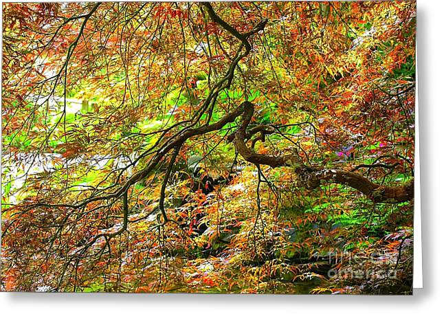 Colorful Maple Leaves Greeting Card by Carol Groenen