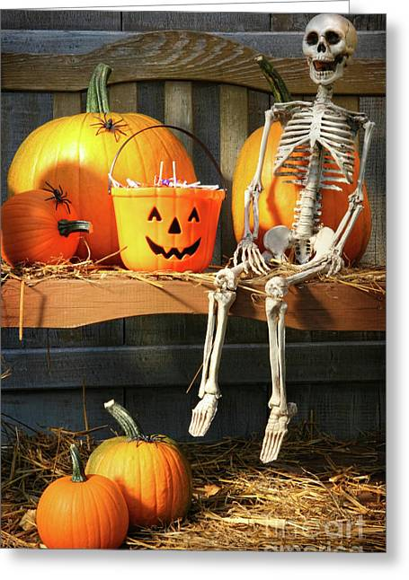 Jack-o-lanterns Greeting Cards - Colorful pumpkins and skeleton on bench Greeting Card by Sandra Cunningham