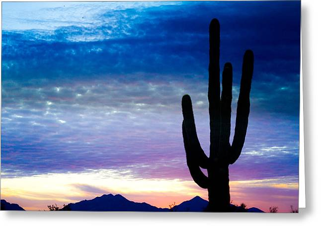 Colorful Southwest Greeting Cards - Colorful Southwest Desert Sunrise Greeting Card by James BO  Insogna