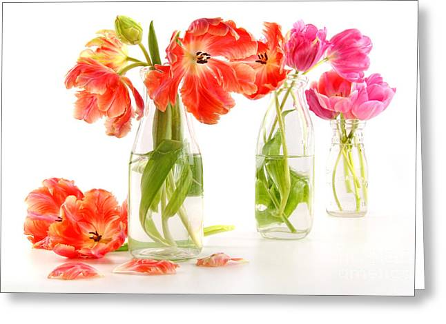 Glass Bottle Greeting Cards - Colorful spring tulips in old milk bottles Greeting Card by Sandra Cunningham