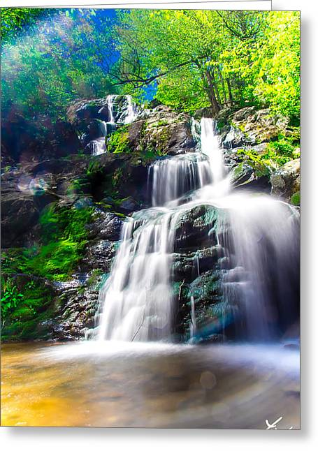 Hdr Landscape Pyrography Greeting Cards - Colorful Stream Greeting Card by Shane York