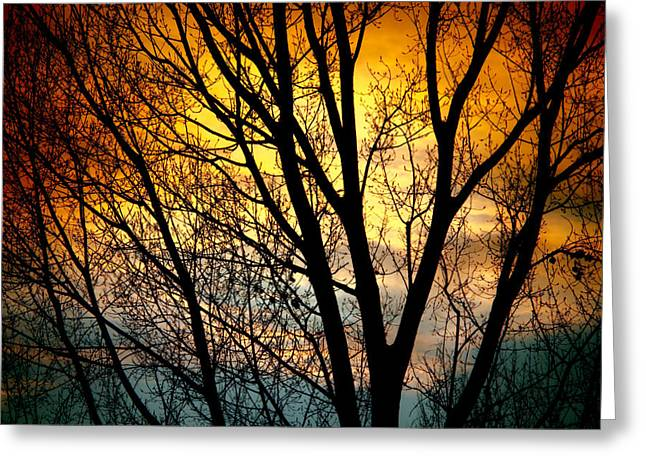 Sunset Canvas Art Greeting Cards - Colorful Sunset Silhouette Greeting Card by James BO  Insogna