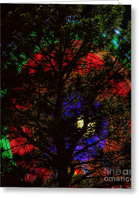 Lightning Photographs Greeting Cards - Colorful Tree Greeting Card by James BO  Insogna