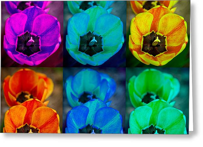 Office Space Photographs Greeting Cards - Colorful Tulip Collage Greeting Card by James BO  Insogna