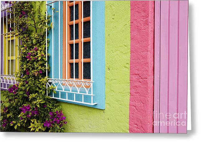 San Miguel De Allende Greeting Cards - Colorful Walls Greeting Card by Jeremy Woodhouse