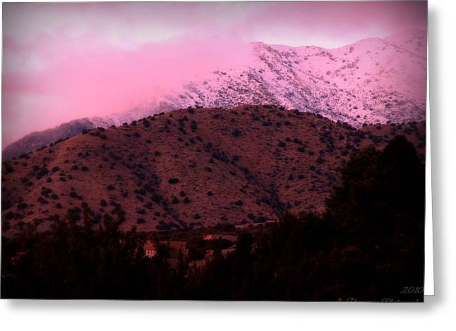 Rincon Greeting Cards - Colors of a Winter Sunset Greeting Card by Aaron Burrows
