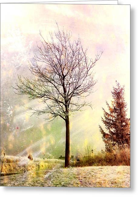 Snowy Day Digital Greeting Cards - Colors of Winter Greeting Card by Julie Palencia