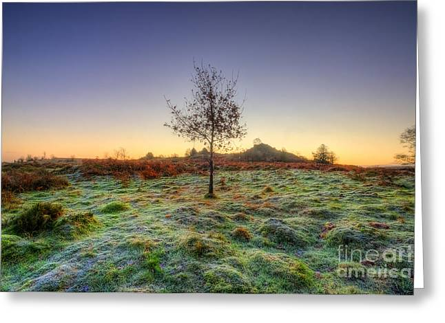 Hdr Landscape Greeting Cards - Colours Of Dawn Greeting Card by Yhun Suarez