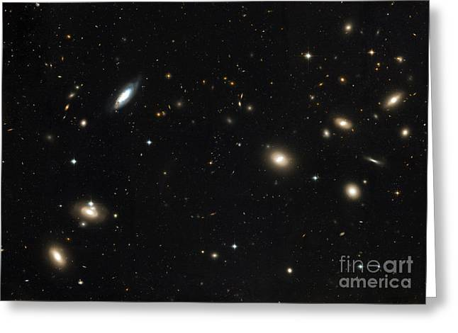 1656 Greeting Cards - Coma Cluster Of Galaxies Greeting Card by Stocktrek Images