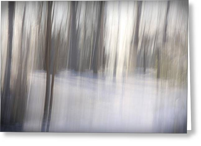 Sacred Grove Greeting Cards - Come Away With Me Greeting Card by Margaret Denny