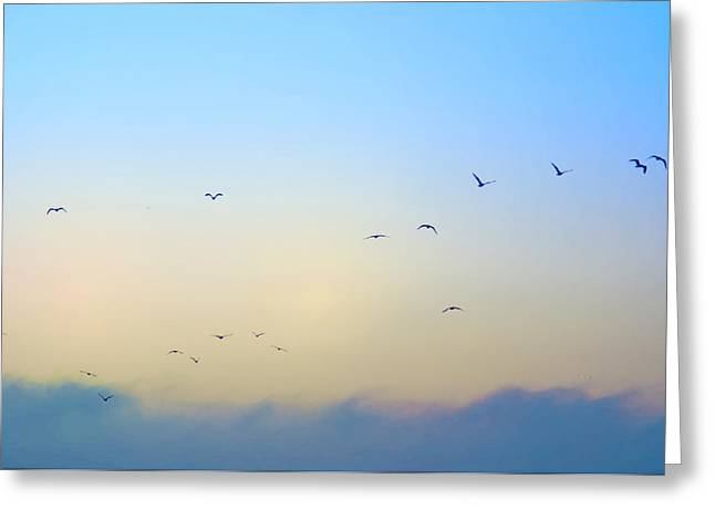 Come Fly With Me Greeting Card by Bill Cannon