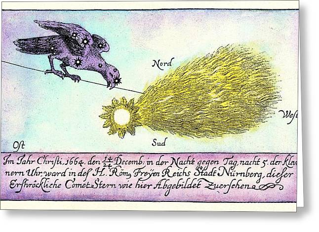 Comet, 1664 Greeting Card by Detlev Van Ravenswaay