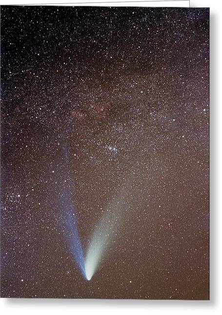Hale-bopp Comet Greeting Cards - Comet Hale-bopp Greeting Card by Laurent Laveder