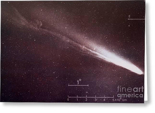 Long Period Comet Greeting Cards - Comet Kohoutek Greeting Card by Science Source