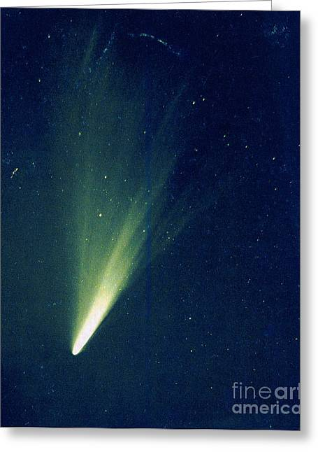 Comet West, 1976 Greeting Card by Science Source
