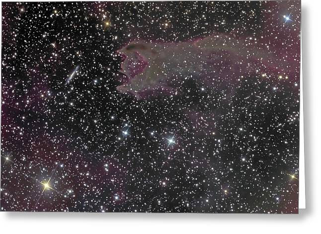 Twinkle Greeting Cards - Cometary Globule Cg4 In The Southern Greeting Card by Don Goldman