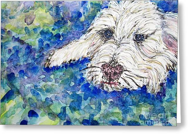White Terrier Mixed Media Greeting Cards - Comfy Spot Greeting Card by DJ Laughlin