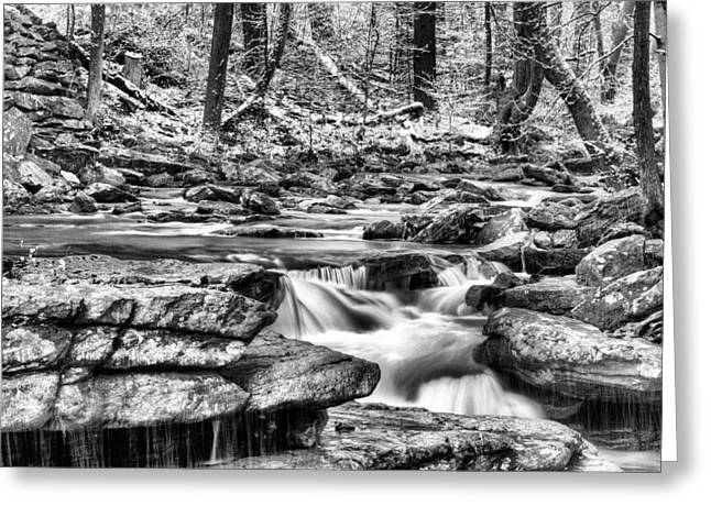 Bw Waterfalls Greeting Cards - Coming Down BW Greeting Card by JC Findley